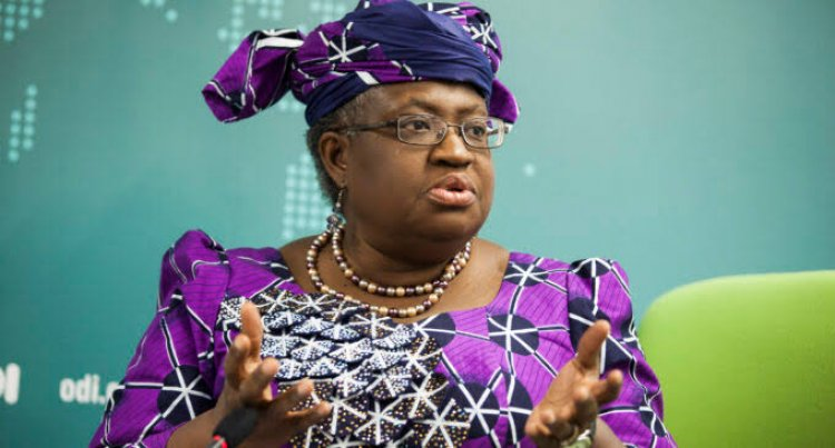 'I Was Surprised Donald Trump Blocked My Selection' – Okonjo-Iweala