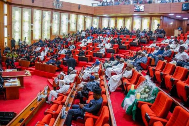 Students Abduction: Declare State Of Emergency – Senate Tells President Buhari