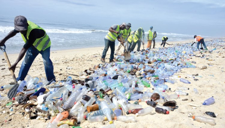 NGO Calls For reintroduction Of Sanitary Inspectors