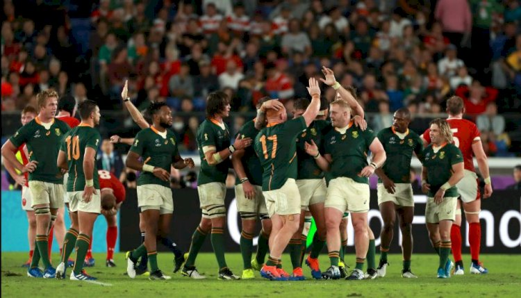 South Africa edge brutal clash with Wales to set up Rugby World Cup final against England