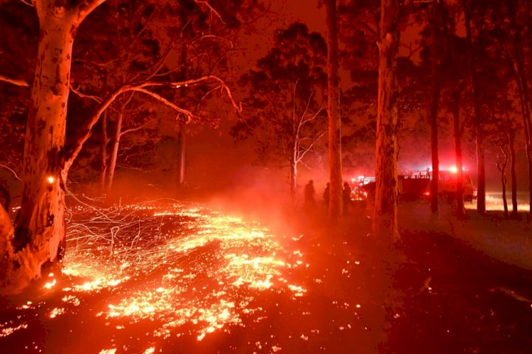 Thousands flee to beaches as raging wildfires turn Australia red and block out sun